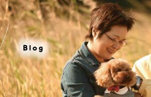 くーたんママのブログ