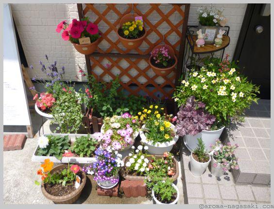 アロマ長崎 花壇