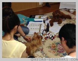 aroma-nagasaki-20140717002